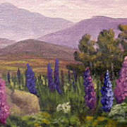 Morning Lupines Art Print