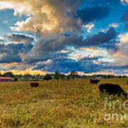 Morning On The Farm Two Art Print