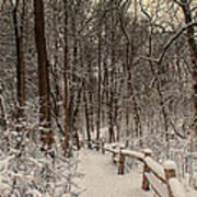 Morning Snow Path Art Print