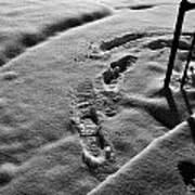 Mornings First Footprints  Art Print