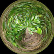Morphed Art Globe 3 Art Print by Rhonda Barrett