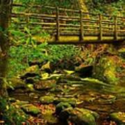 Moss Bridge Art Print