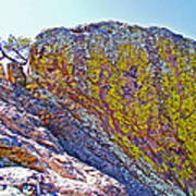 Moss On Giant Rocks Along Echo Canyon Trail In Chiricahua National Monument-arizona  Art Print
