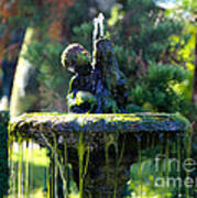 Mossy Fountain Art Print