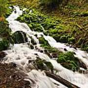 Mossy River Flowing. Art Print