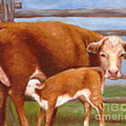 Mother And Baby Cow Art Print