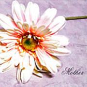 Mother's Gerber Daisy Art Print