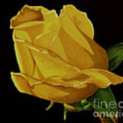 Mother's Yellow Rose Art Print by Cory Still