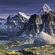 Mount Assiniboine In The Fall Art Print