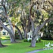 Mount Dora Print by Carey Chen