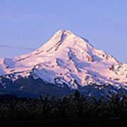 Mount Hood Oregon Art Print