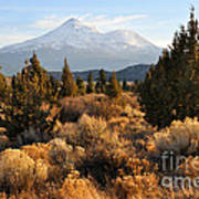 Mount Shasta In The Fall  Art Print by Gary Whitton