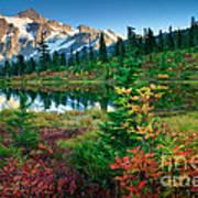 Mount Shuksan Fall Cornucopia Art Print