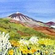 Mount Tiede In Tenerife Art Print