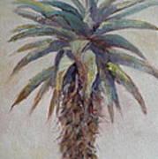 Mountain Aloe Art Print