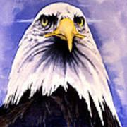 Mountain Bald Eagle Art Print