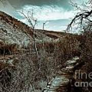 Mountain Creek Path-sundance Utah V3 Art Print