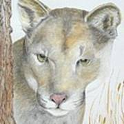 Mountain Hunter Art Print