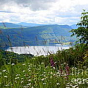 Mountain Lake Viewpoint Art Print by Carol Groenen