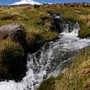 Mountain Stream And Guallatiri Volcano Art Print
