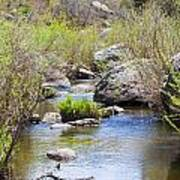 Mountain Stream In Castlewood Canyon State Park Art Print