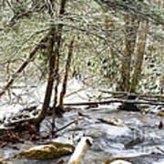Mountain Stream In Winter Art Print