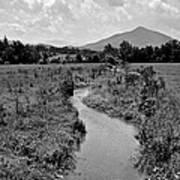 Mountain Valley Stream Art Print