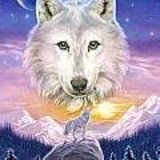 Mountain Wolf Art Print