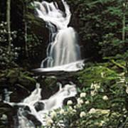 Mouse Creek Falls - Fs000675 Art Print