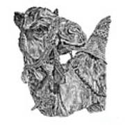 Mr Camel Art Print