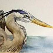 Mr herrin Art Print