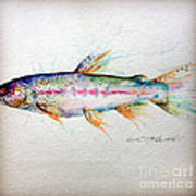 Mr Trout Print by Chris Mackie