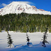 Mt Rainier And Three Trees Art Print