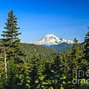 Mt Rainier Art Print
