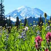 Mt. Rainier Wildflowers Art Print