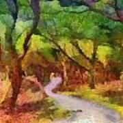 Muckross Woods Art Print