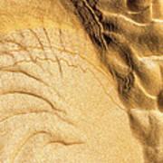 Mud Flare Art Print