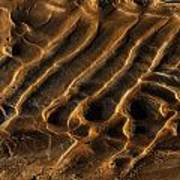 Mud Flats Five Art Print