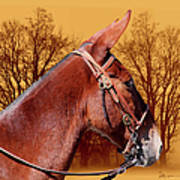 Mule Days - Westmoreland Tn  9-28-13 Art Print