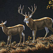 Mule Deer Ridge Art Print