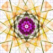 Multi Flower Abstract Art Print