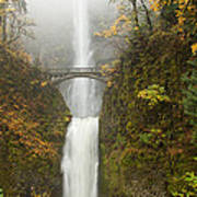Multnomah Autumn Mist Art Print by Mike  Dawson