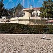 Municipal Square Fountain Art Print
