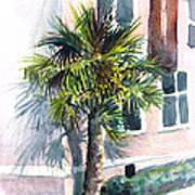 Museum Palm Art Print