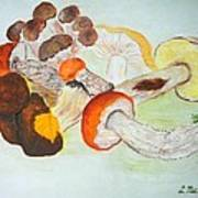 Mushrooms Time Art Print