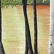 Muskoka Lagoon Art Print