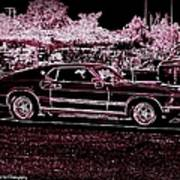 Mustang Rose Art Print