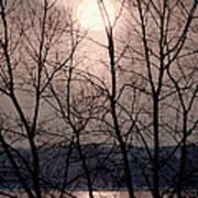 Muted Sunrise Art Print