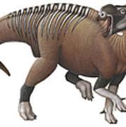 Muttaburrasaurus Dinosaur Art Print