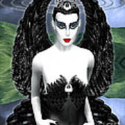 My Black Swan Art Print